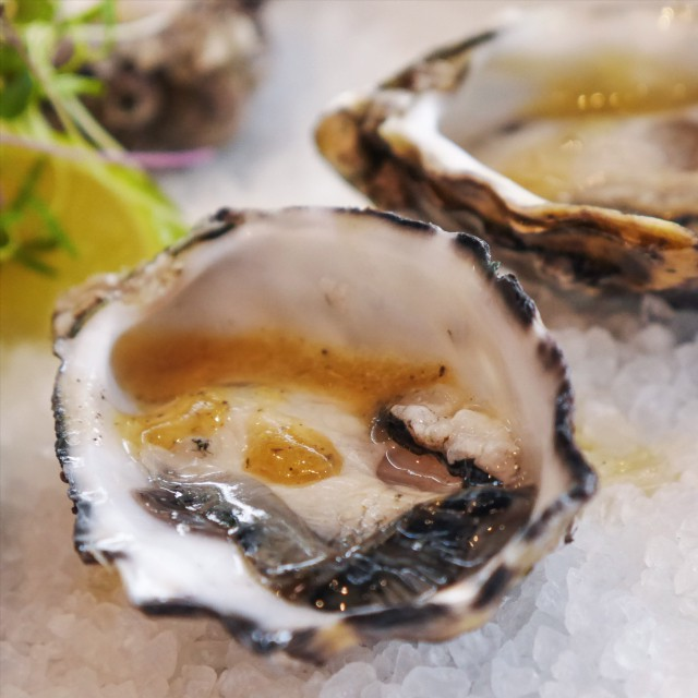 Oysters by Dougal